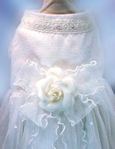 Dog bridal gown