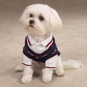 Boy dog shirts